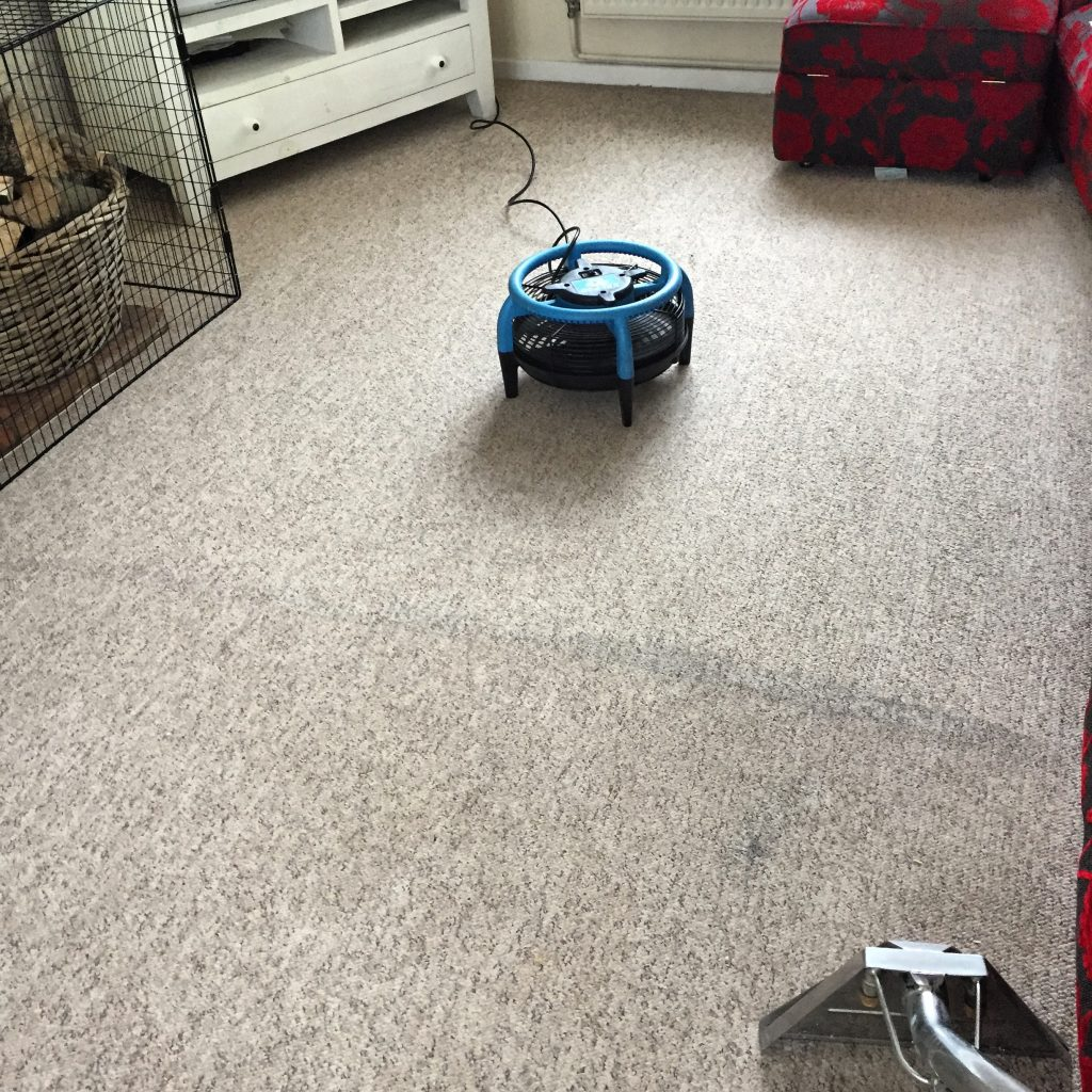 Lounge Carpet Clean In Dereham Topmarkcleaning Norwich